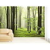 fototapete selbstklebend papier 06 kein einkleistern mehrfach klebbar wieder abl sbar wald. Black Bedroom Furniture Sets. Home Design Ideas