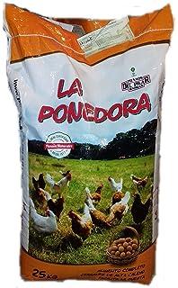 FINCA CASAREJO Pack comedero y Bebedero para gallinas y Otras Aves ...