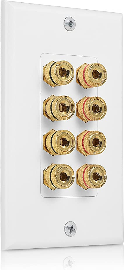 Cable Matters Speaker Wire Wall Plate (Speaker Wall Plate, Banana Plug Wall  Plate) for 10 Speakers in White