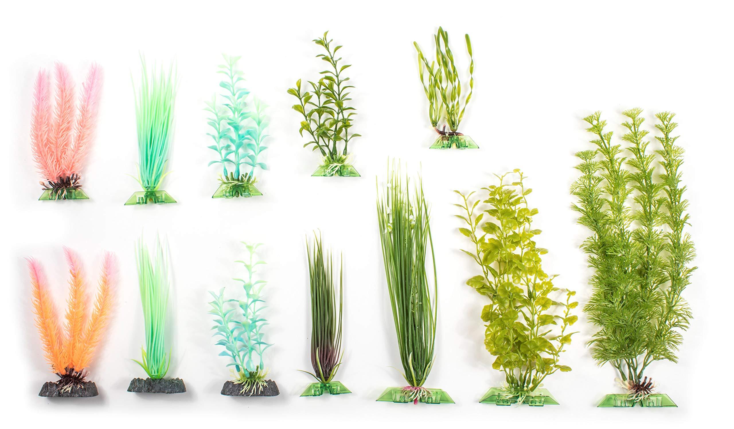 Penn Plax Twelve Piece Aquarium Plant Gift Set - Everything You Need for a 10 Gallon Fish Tank by Penn Plax