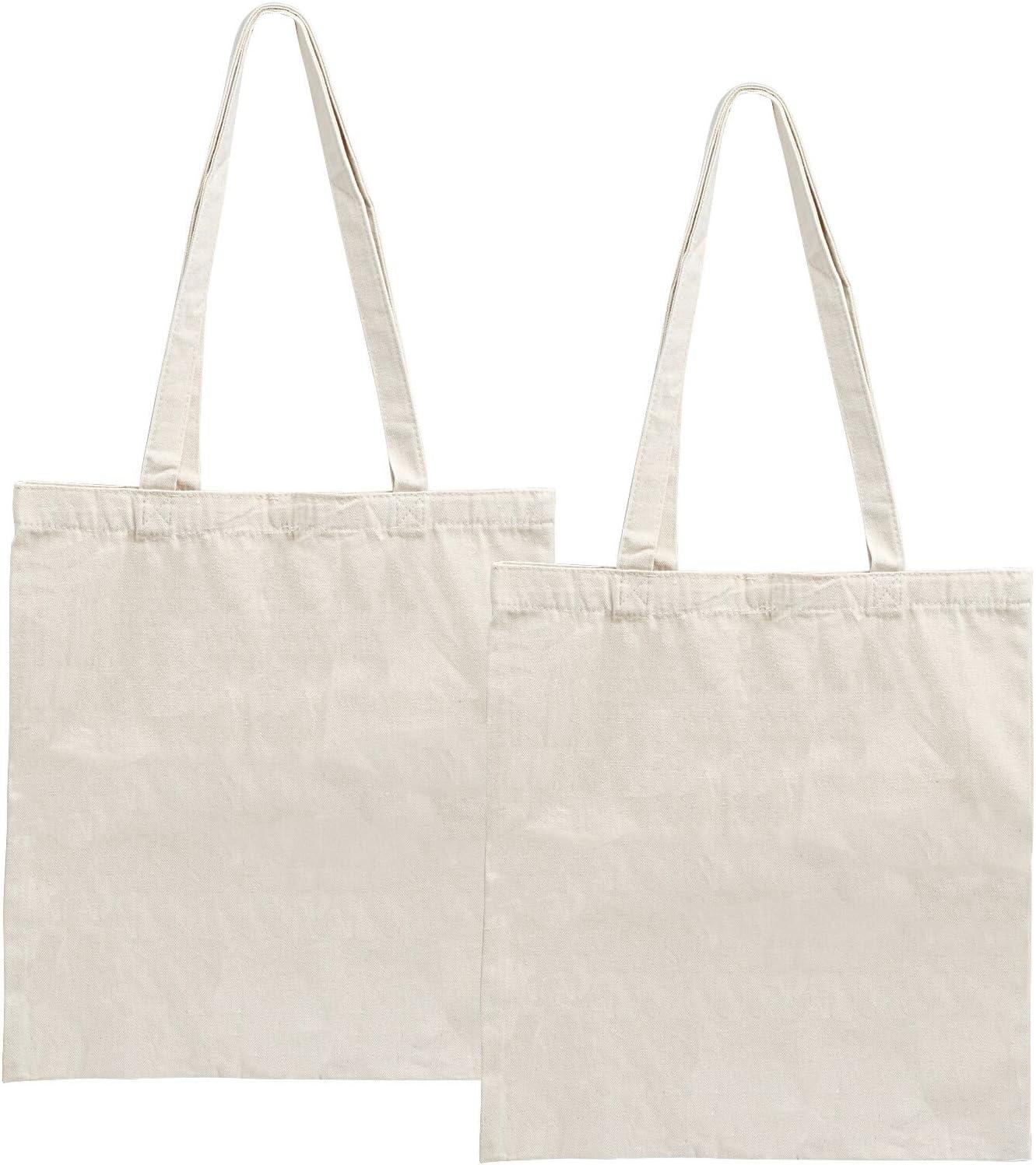 LEMESO 2 Bolsas de Lona para Compra Bolsas de Compra Reutilizables DIY Decoración: Amazon.es: Hogar