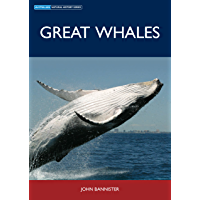 Great Whales (Australian Natural History)