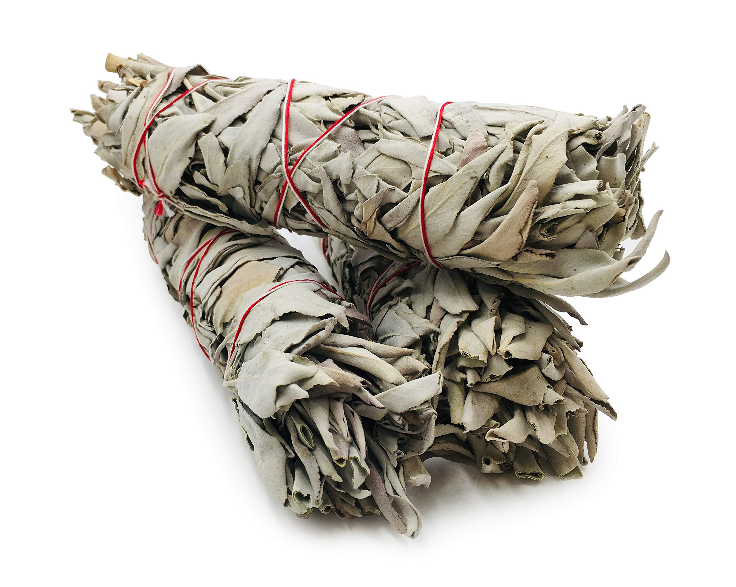 Alternative Imagination Premium, 7 Inch California White Sage Smudge Sticks. by Alternative Imagination (Image #3)