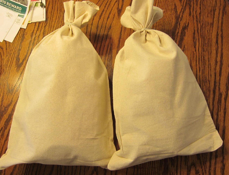 2 Canvas Bank Coin Money Sack Bag 12 By 19 Deposit Change Bags Transit