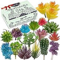 Plantas suculentas artificiales de primera calidad, paquete de 18 unidades, plantas suculentas falsas, paquete variado…