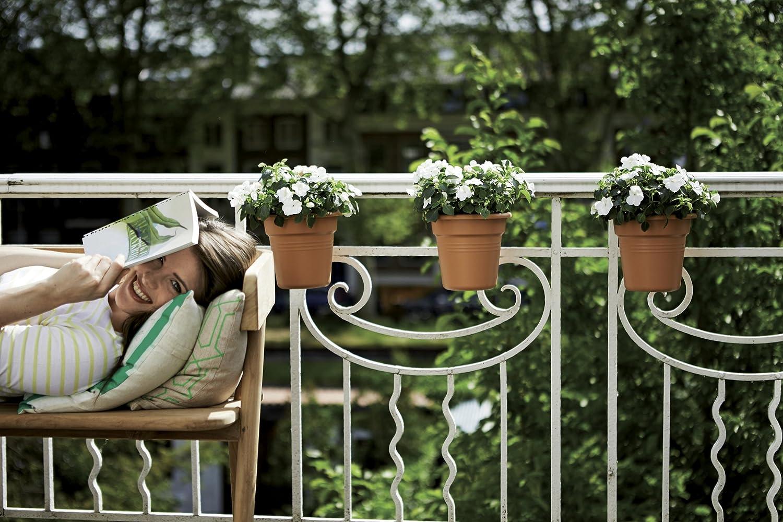 Ext/érieur /& Balcon L 18.2 x W 26.2 x H 25.7 cm Planteur Cerise Elho Green Basics Facile /À Accrocher Small