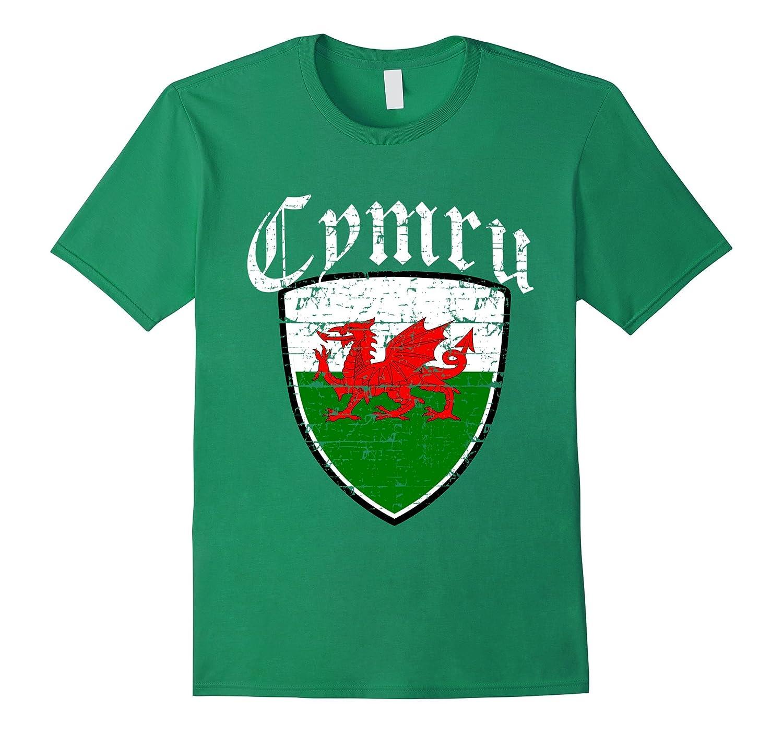 Welsh Flag tshirt-FL