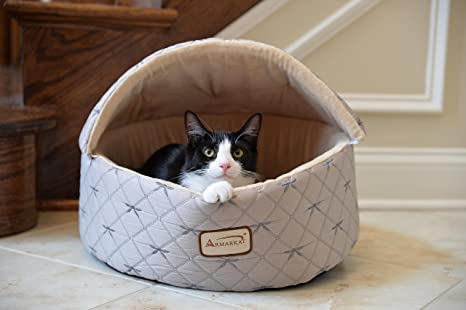 Amazon.com: armarkat con capucha acolchado Plata/Beige Cat ...