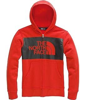 0ab64b070b0f The North Face Kids Boy s Logowear Full Zip Hoodie (Little Kids Big Kids)