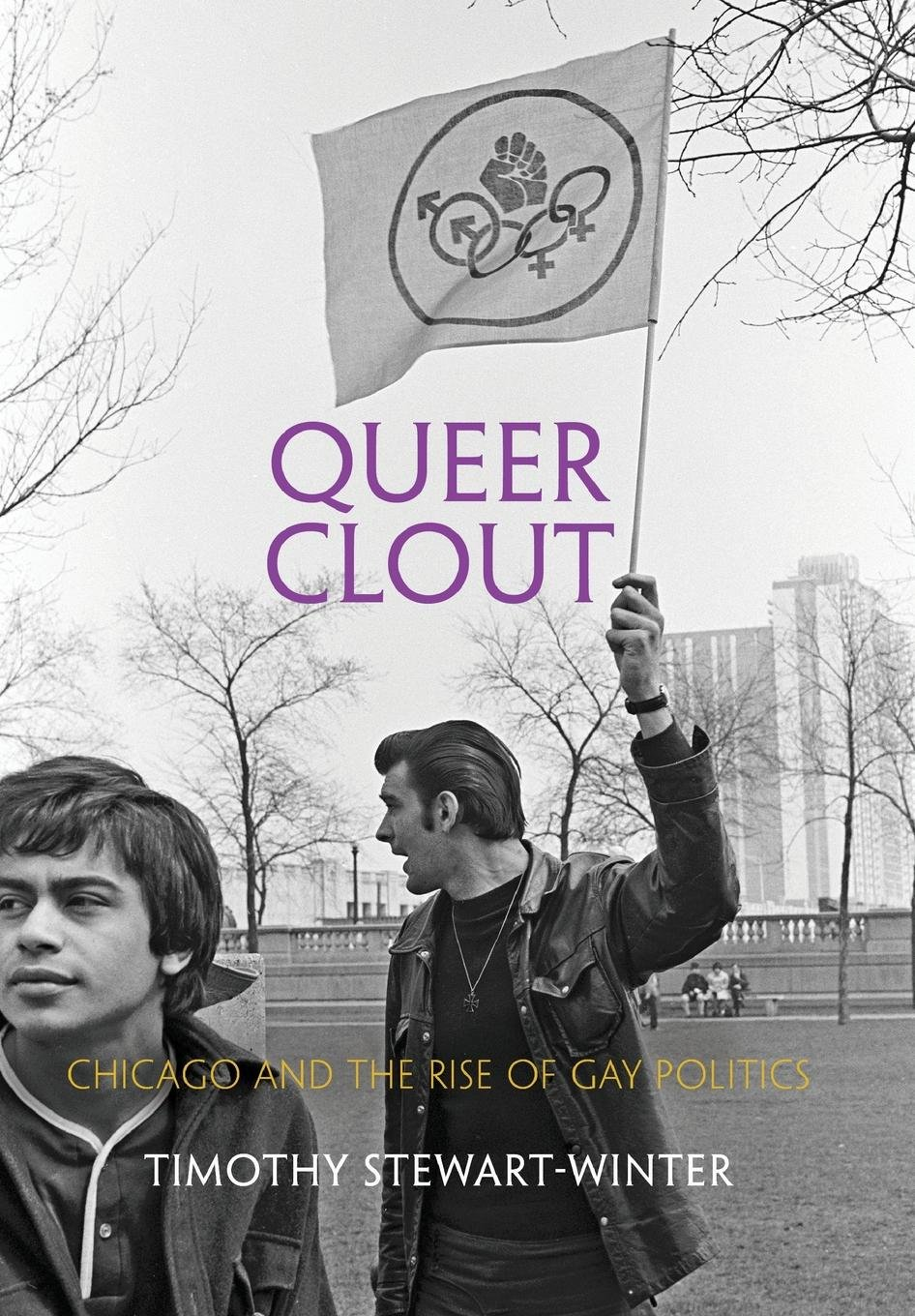 Queer Clout: Chicago and the Rise of Gay Politics (Politics and Culture in Modern America) pdf