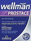 Vitabiotics Wellman Prostace - 60 Tablets