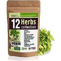 Complete Blumen Sapore Italiano Vegetable Herb Garden Allotment Seeds 24 Packs