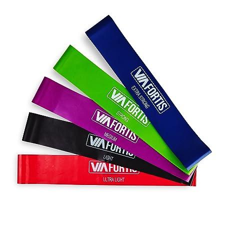 VIA FORTIS Premium Fitness Band Set – 5 Fitnessbänder + Tasche und Anleitung – Widerstandsbänder, Gymnastikbänder, Resistance