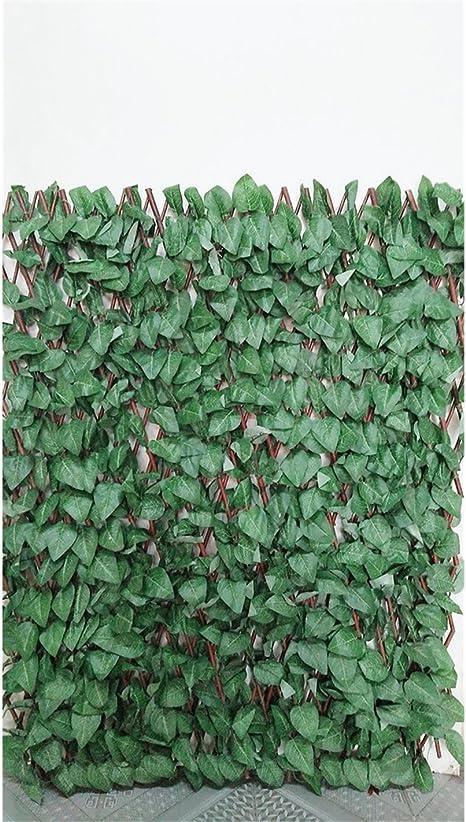 Faura - Celosia Extensible de Mimbre - Hoja Arce: Amazon.es: Jardín