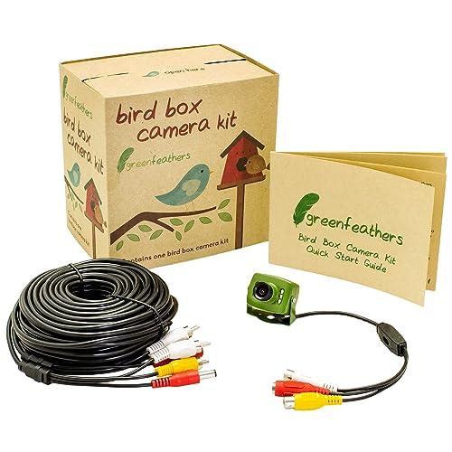 Green Feathers Mobile Amp Ipad View Hd Ip Bird Box Camera