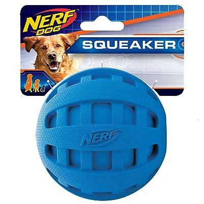 Nerf Dog Checker Ball Dog Toys