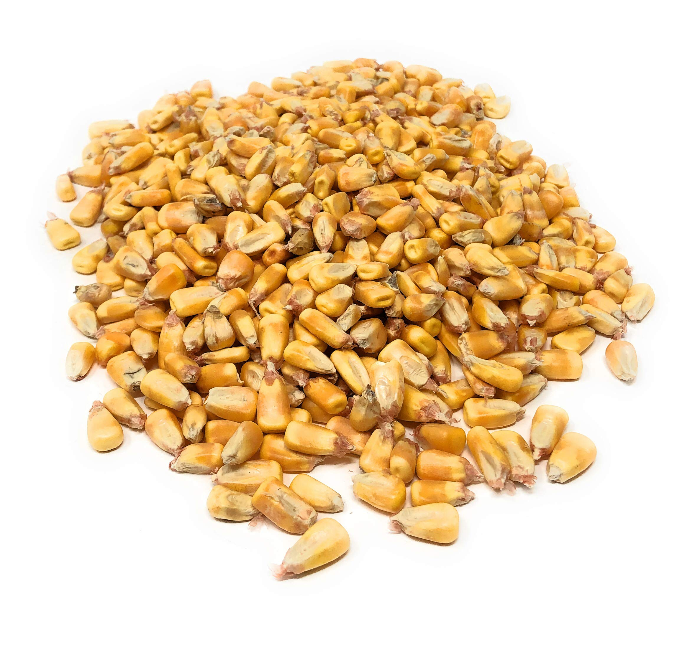 Bulk Iowa Feed Corn from 2018 Crop - Great for Wildlife - Feed Deer, Squirrels, Birds - Make Cornhole bags or use for Crafts and Games - Can be Distilled or Used in Corn Furnace/Heater (500 POUNDS!) by Soyboyz (Image #1)