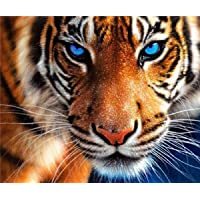 """5D Diamond Painting Full Drill, Paint with Diamonds Cross Stitch Craft Kit Embroidery Rhinestone Arts for Home Decor Tiger 12x14"""""""