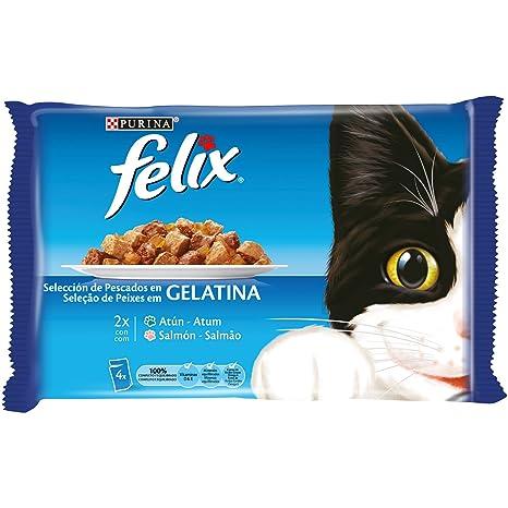 Purina Felix Gelatina comida para gatos con surtido de pescados 10 x [4 x 100