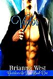 Victor: Volume 1 (Guardians In Love)