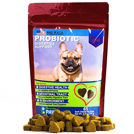 Amazon Com Probiotics For Dogs Treats For Digestion Diarrhea