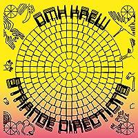 Strange Directions (Vinyl)