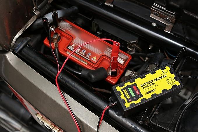 13 opinioni per LGVSHOPPING Caricabatterie mantenitore Batteria 6V 12V 1A con cavetti per Auto
