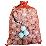 Titleist Pro V1/Pro V1X Assorted Models Recycled B/C Grade Golf Balls in Onion Mesh Bag (72-Piece), White