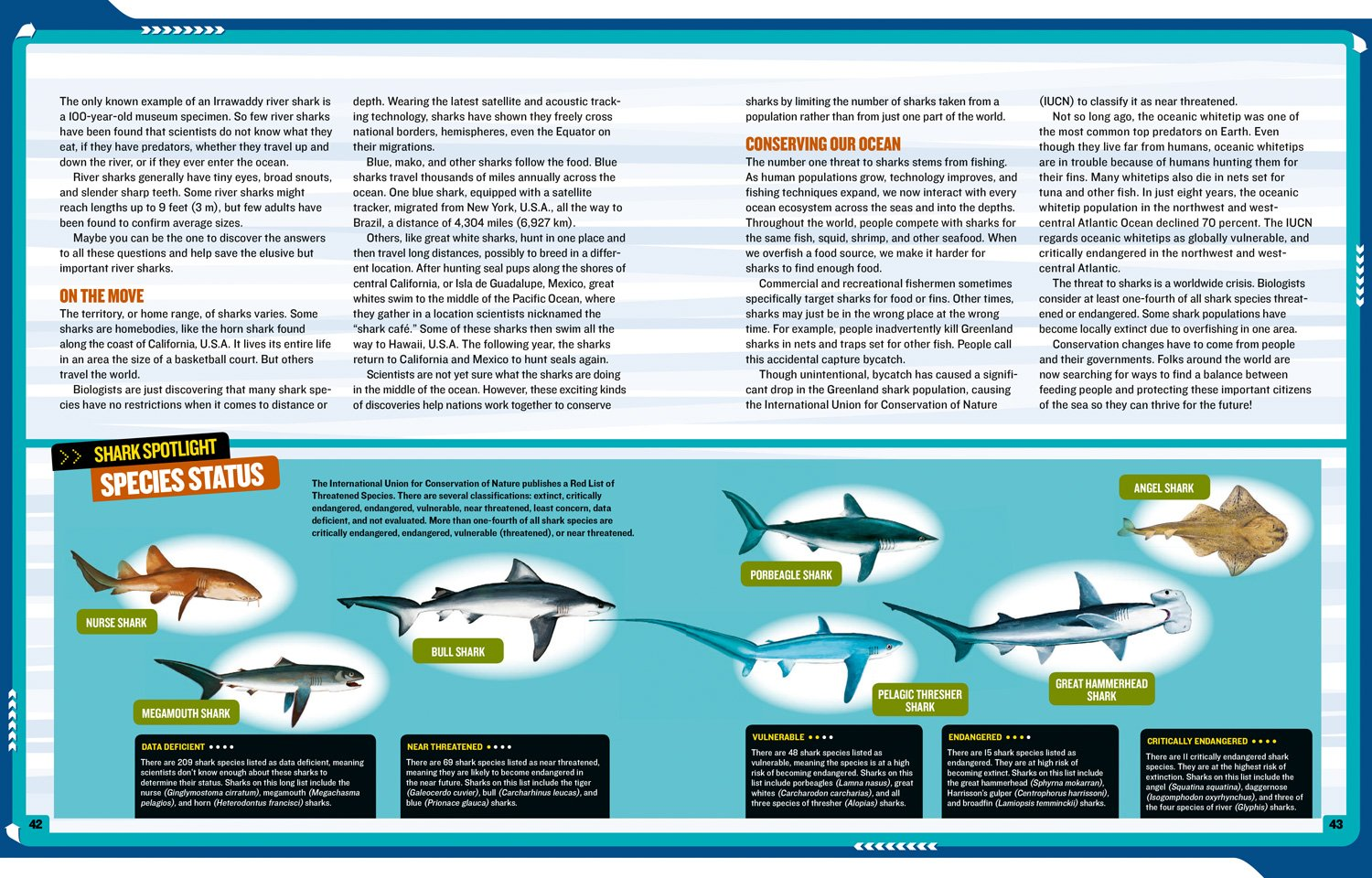 National Geographic Kids Mission: Shark Rescue: All About Sharks and How to Save Them (NG Kids Mission: Animal Rescue) by National Geographic Children's Books (Image #5)