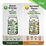Focus + Energy Bundle | Panax Ginseng & Ginkgo