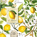 Michel Design Works 20-Count 3-Ply Paper Luncheon Napkins, Lemon Basil