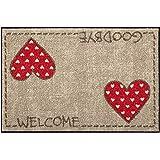 Salonloewe Fußmatte waschbar Lauras Herzen 75x120 cm SLD0843-075x120