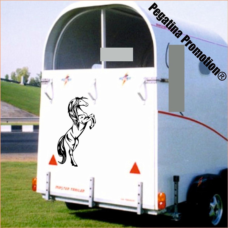 steigendes Pferd Aufkleber Anhänger Pferd Anhänger ca. 60x30cm Pegatina Promotion ®