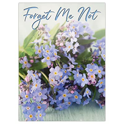 Seed Needs, Set of 20 Forget-Me-Not Remembrance Seed Packet Favors (Packets are Already Filled) Great for Memorials, Funerals, Special Events or Baby Showers : Garden & Outdoor
