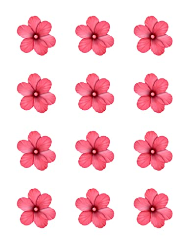 Amazon hibiscus pink flowers edible image cupcake toppers hibiscus pink flowers edible image cupcake toppers set of 12 precut 2quot mightylinksfo