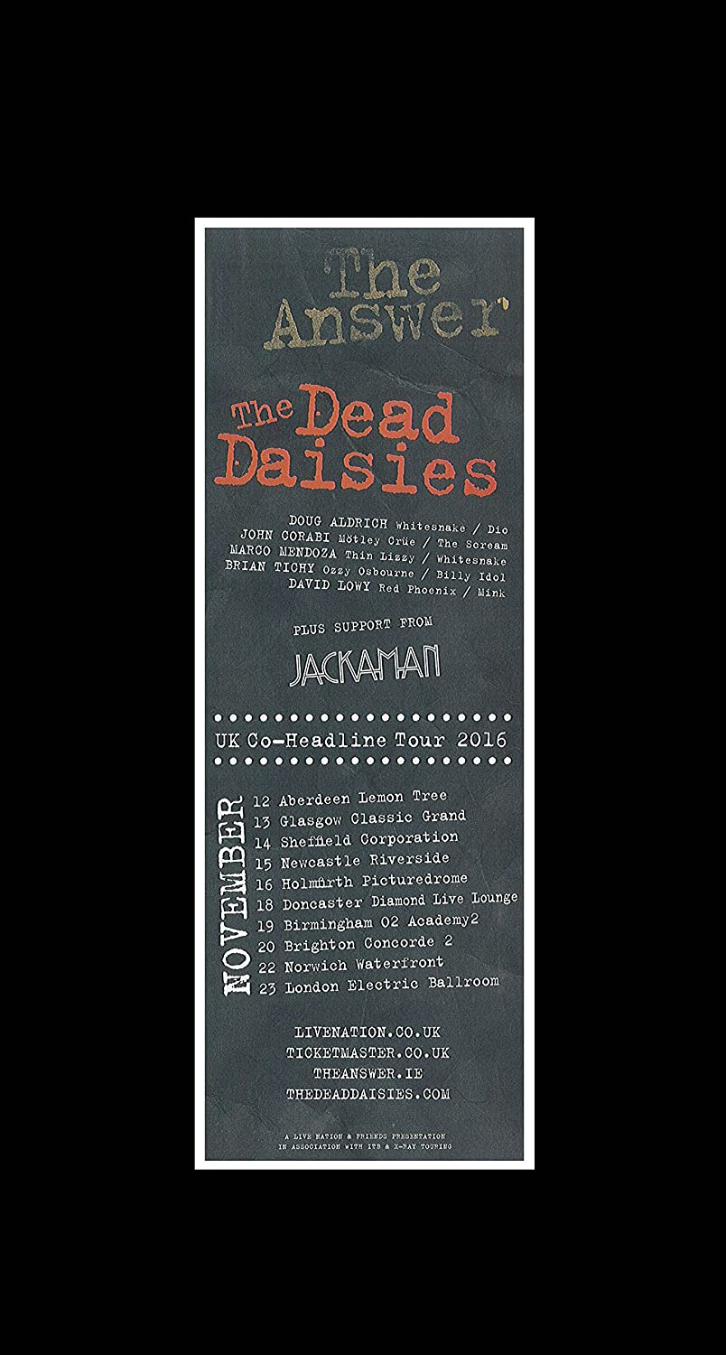Amazon.com: Stick It On Your Wall The Answer & The Dead Daisies - UK ...