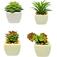 *Limited Time Offer* Hakea Set of 4 Mini Artificial Succulent Plant Pot for Home Or Office Kitchen Living Room Decor…