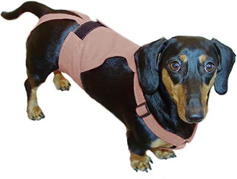 Red Lanyard Incontinence w PUL /& All-in-One Options Male Dog Belly Band Diaper for Marking
