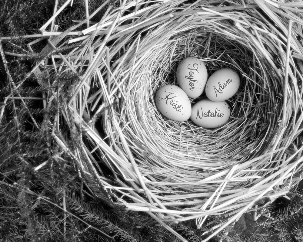 Mothers Nest Personalized Print