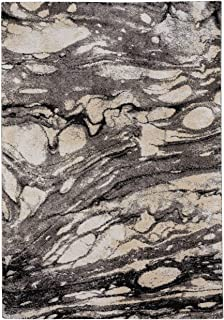 "product image for Capel Rugs Gravel-Marble Area Rug, 3' 11"" x 5' 6"", Ore"