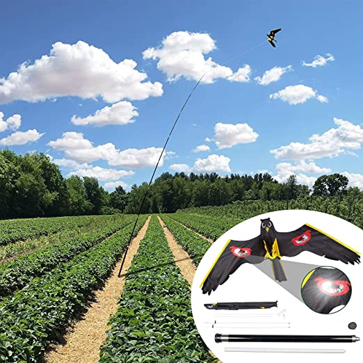 Gardigo Barrilete de Halcón Espantapájaros Disuasión Repelente para Aves Antipalomas Gorriones, con Caña Telescópica de 9 metros y Bolsa de Transporte: Amazon.es: Jardín
