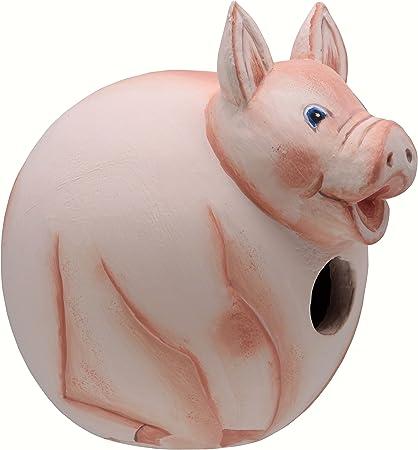 Amazon Com Songbird Essentials Se3880083 Pig Gord O Birdhouse Set Of 1 Garden Outdoor
