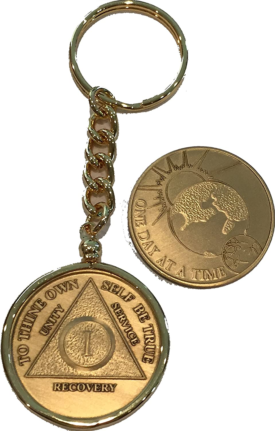 Alcoholics Anonymous AA NA Mouse Keychain Ring Medallion Holder Chip Token Coin