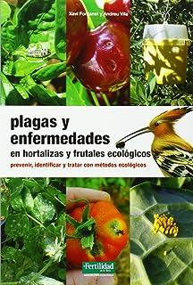 Plagas y enfermedades en hortalizas y frutales ecológicos: prevenir, identificar y tratar con métodos