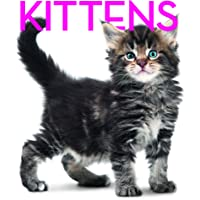 Kittens Cubebook: Cube Book (Cube Books)