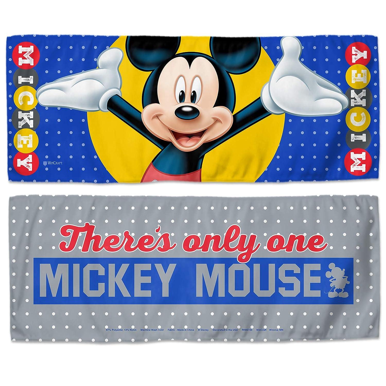 Amazon.com: Disney Disney WinCraft Disney Cenicienta mágica ...