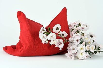 Bolsas De Cereza Hoyo/ uni rojo (24x24 cm) Cojín de huesos ...