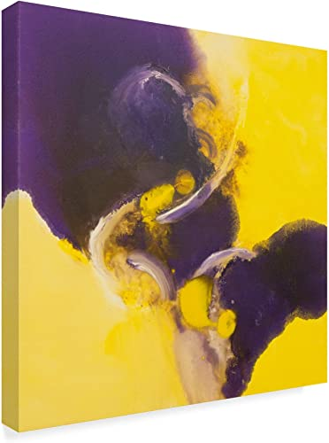 Trademark Fine Art ALI37619-C3535GG Flood of Purple Yellow