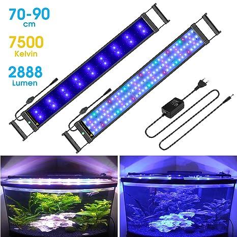 Main Luz LED, iluminación Acuario Acuario Blanco Azul Rojo Verde luz 7,5 W/16 ...