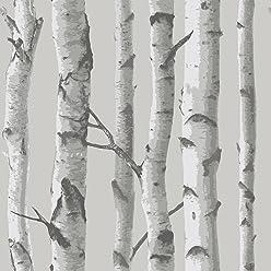 NuWallpaper NU1694 Mountain Birch Grey Peel & Stick Wallpaper